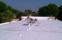 Exterior Painting Olympia By J Linder Painting
